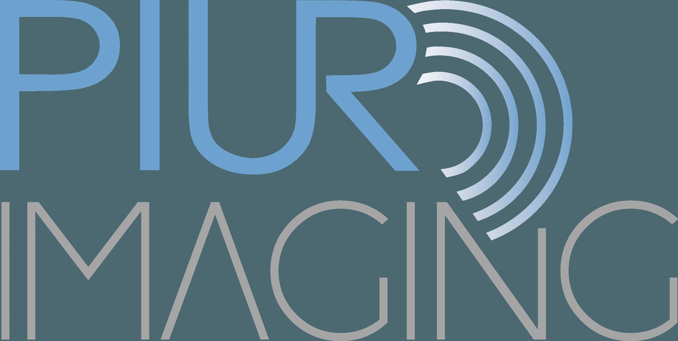 Logo_piur